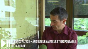 Apiscope Ruche pédagogique en Alsace - Apila l'Abeille - école