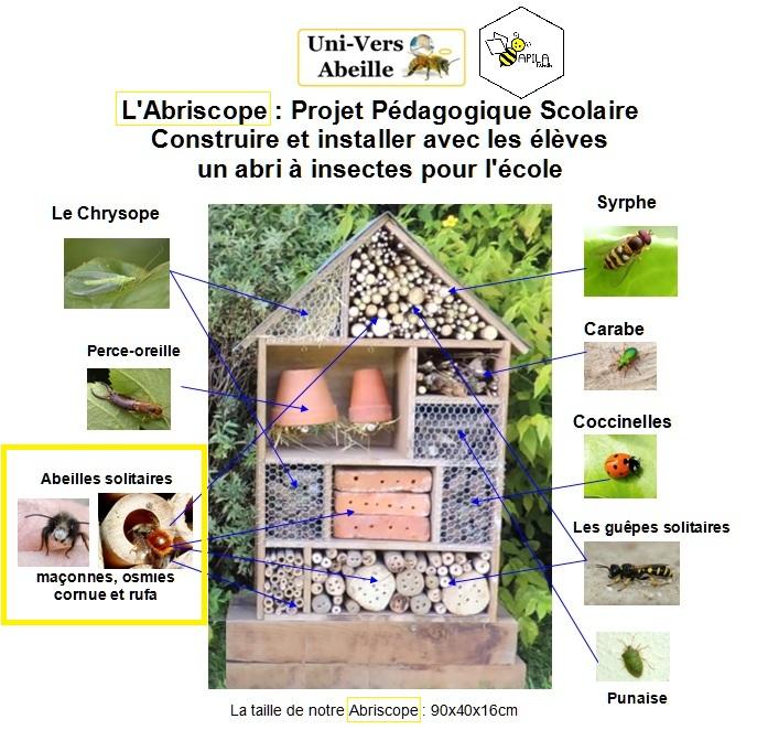 Abriscope un abri abeilles