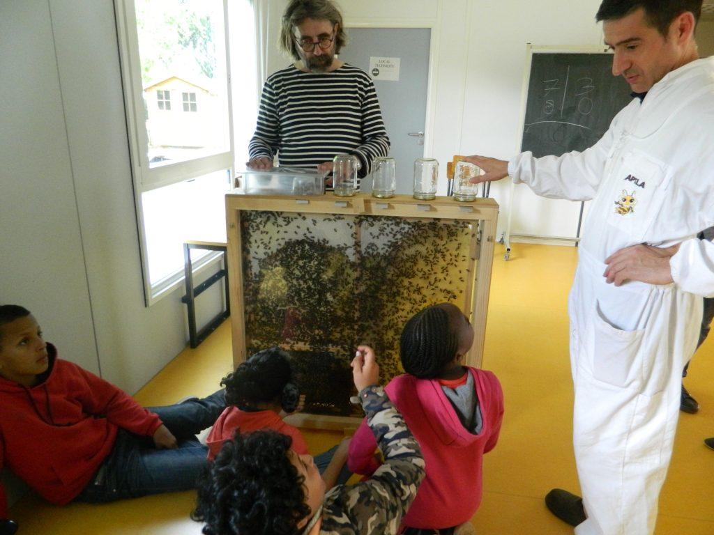 Installation du premier Apiscope à l'école At'Home de Bischheim