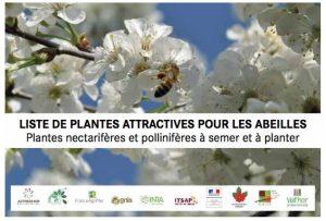 Liste plante mellifères abeilles 2017 ministère agriculture
